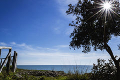 The smile of the sun's rays. Morning sun's rays, blue sky and sea, sea horizon Royalty Free Stock Image