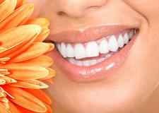 Smile and teeth. Beautiful woman smile, teeth and a fresh flower Stock Photography