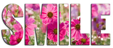 Smile text filled with pink flowers Stock Photo