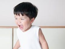 Smile toddler boy portrait Stock Photos