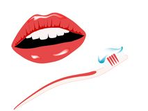 Smile and toothbrush Stock Photography