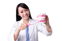 Smile woman dentist doctor Royalty Free Stock Image