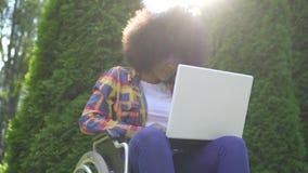 Smilerafrikanska amerikanen som kvinnan med en afro frisyr inaktiverade i en rullstol, använder en bärbar datorsunflare parkerar  arkivfilmer