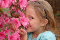 She Smiles royalty free stock images