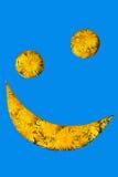 Smiley από τις πικραλίδες Στοκ φωτογραφία με δικαίωμα ελεύθερης χρήσης