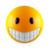 smiley προσώπου Στοκ Φωτογραφία