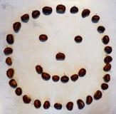 Smiley сделанный из каштанов стоковое изображение