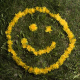smiley стороны одуванчиков Стоковая Фотография RF