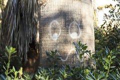 Smiley auf dem Stamm einer Palme Seien Sie mit Natur positiv stockbilder