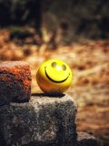 Smiley Ball photo libre de droits