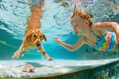 Smiley child with dog in swimming pool. Funny portrait. Underwater action. Smiley child play with fun, training golden retriever puppy in swimming pool - jump Stock Images