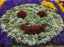 Smiley dei fiori Immagini Stock