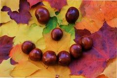 Smiley della castagna con le foglie di autunno Fotografie Stock Libere da Diritti