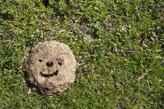 Smiley dessiné dans la bouse de vache sur le champ images libres de droits