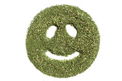 Smiley emoticon. Happy  made of green grass of cannabis Stock Photography