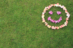 Smiley face emoticon from petals of rose on background of grass. Royalty Free Stock Image