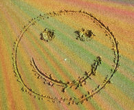 Smiley face in the sand Stock Image
