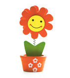Smiley flower Stock Photography