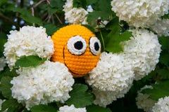 Smiley giallo fra i fiori Immagini Stock Libere da Diritti