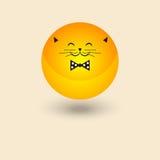 Smiley gordo do gato Foto de Stock Royalty Free