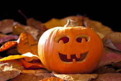 Smiley Jack-O-Lantern Stock Images
