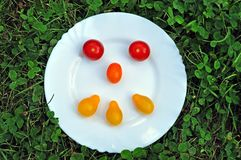 Smiley from  tomato on a round white plate. royalty free stock photo
