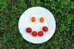 Smiley from  tomato on a white plate. stock photography