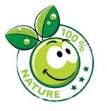 Smiley organico con i fogli verdi Fotografia Stock