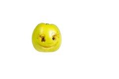 Smiley sorridente felice dalla mela Sensibilità, atteggiamenti Immagine Stock Libera da Diritti