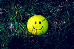 Smiley  standing in the grass. With moody darker retouching royalty free stock photo