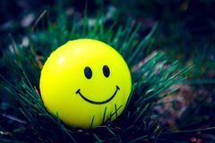 Smiley  standing in the grass. With moody darker retouching stock photography