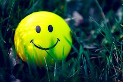 Smiley  standing in the grass. With moody darker retouching royalty free stock photography