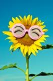 Smiley Sunflower che indossa i vetri divertenti sotto il cielo blu Immagini Stock