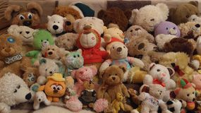 Smiley teddy bears Royalty Free Stock Photo