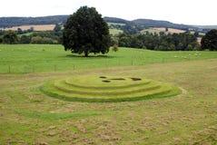Smileyframsida i ett fält landskapkonst eller design royaltyfri foto