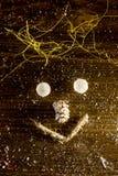 Smilie рождества сделанное с конусом шариков, веревочки и ели Стоковые Фото