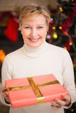 Smiling active seniors holding a gift at christmas Royalty Free Stock Photo