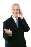 Smiling and Agreeable Businessman on Phone Royalty Free Stock Photos