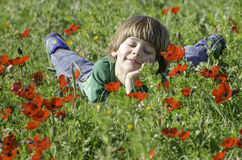 Smiling in an Anemones field Stock Images