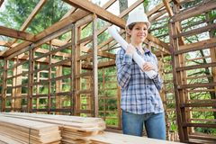 Smiling Architect Holding Blueprint In Timber Royalty Free Stock Photo