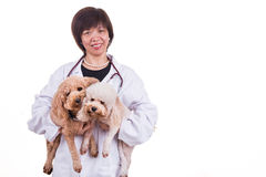 Smiling Asian female veterinary doctor hugging pet dog Royalty Free Stock Photo