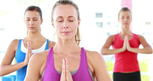 Smiling athletic women standing in yoga position