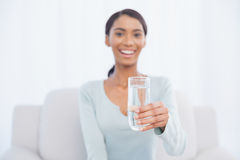 Smiling attractive woman sitting on cosy sofa holding glass of w. Smiling attractive woman sitting on cosy sofa in bright living room holding glass of water Royalty Free Stock Image