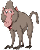 Smiling baboon. Vector illustration of a smiling baboon Stock Photography