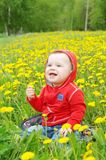 Smiling baby among dandelions Stock Photos