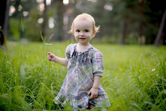 Smiling baby girl in a meadow. Smiling little baby girl wearing nice dress in a meadow Royalty Free Stock Image
