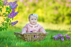 Smiling baby girl 1-2 year old wearing flower wreath, holding bouquet of lilac outdoors. Looking at camera. Summer spring time. Stock Photos