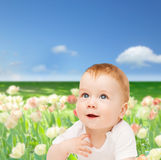 Smiling baby looking up. Child and toddler concept - smiling baby looking up Stock Photos