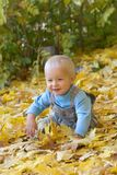 Smiling baby playing in autumn leaves Royalty Free Stock Image