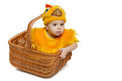 Smiling baby sitting in Easter basket in chicken costume Stock Photography